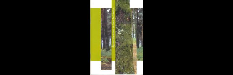 Algumas das árvores da Serra da Cabreira
