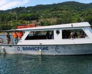 Barco Turístico – O BRANCELHE
