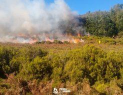 Galeria de Fotos - Queimas e queimadas permitidas