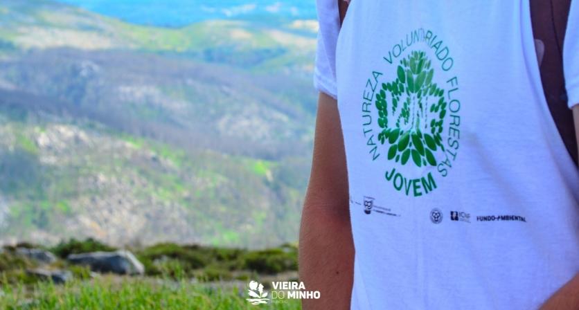 Vieira Vigia + Voluntariado Jovem Para a Natureza e Floresta, inscrições abertas