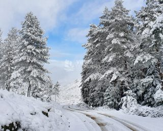 Neve 04 de Dezembro 2020